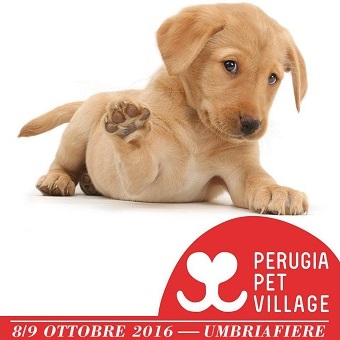 perugia-pet-village-2016