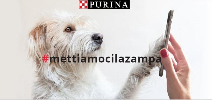 purina_campagna