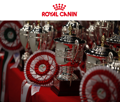 royal_canin_eventidicembre