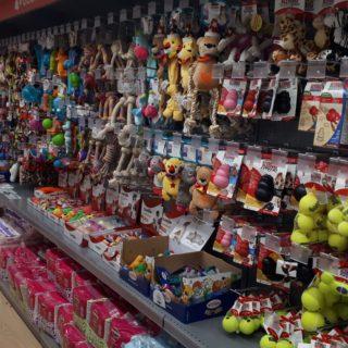 Pet store Conad Savigliano