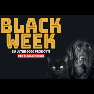 Pet Black Friday