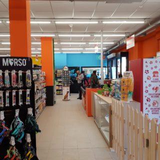 Joe Zampetti Pet Shop Bari