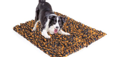 Camon giochi per cani e gatti