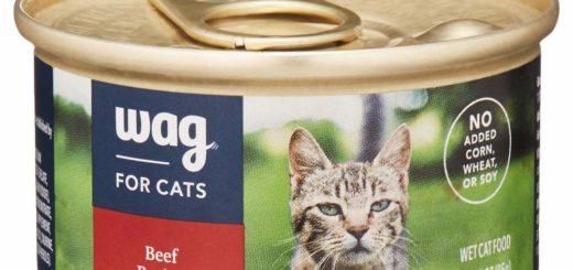 Amazon pet food