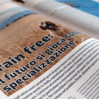 Pet B2B grain free