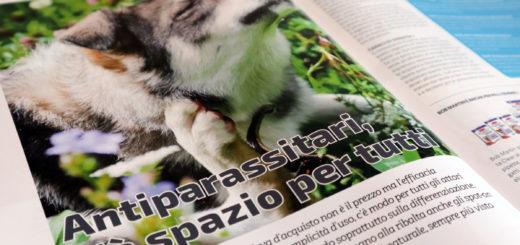 Pet B2B Antiparassitari