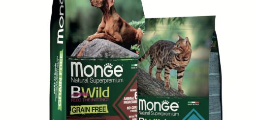 Monge Bwild Grain Free