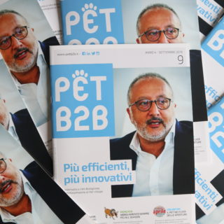Pet B2B Pet Village