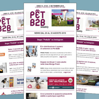 Pet B2B Weekly Pet Village