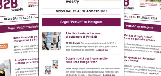Pet B2B Weekly Pet Village