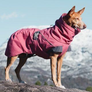 Hurtta giacca cane