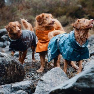 Hurtta giacca per cani