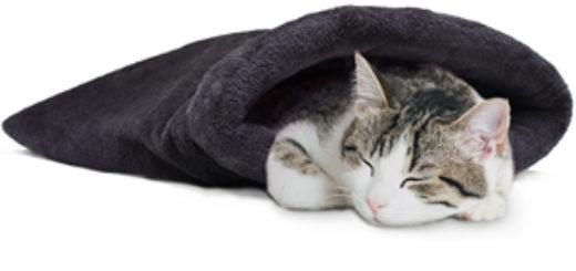 croci gatto accessori arredo