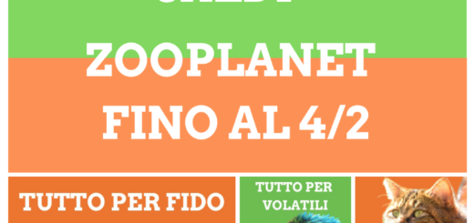 Zooplanet e-commerce