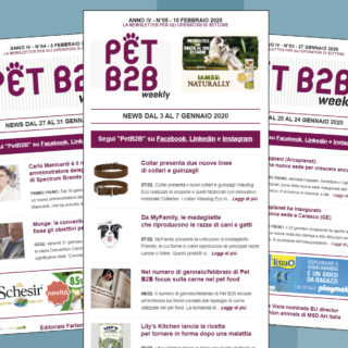 Pet B2B Weekly Collar