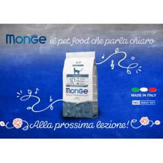 Monge Sanremo