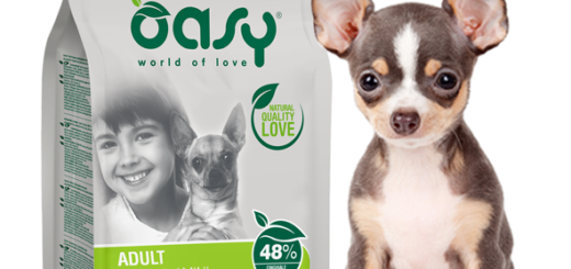 Oasy One Animal Protein Cinghiale