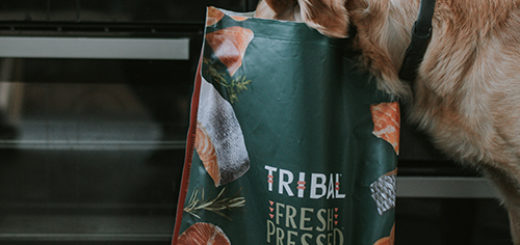 Ticinese Petfood Tribal