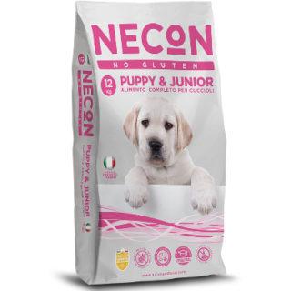 necon puppy