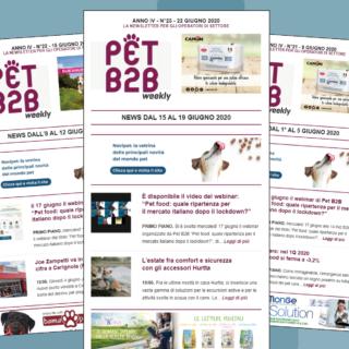 Pet B2B Weekly webinar