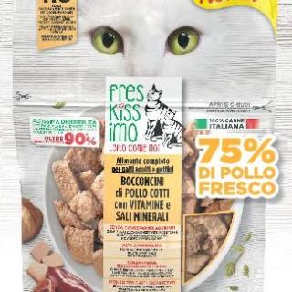 Freschissimo ricetta gatto