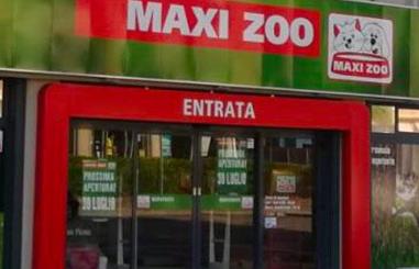 Maxi Zoo Perugia