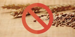 Pet B2B marzo grain free